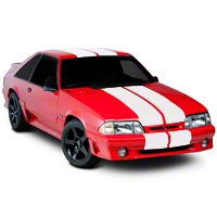 Matte White Lemans Stripes - 12 in. (79-93 All) - American Muscle Graphics 101445G79