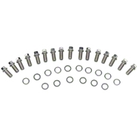 ARP Stainless Steel Header Bolts (79-95 5.0L) - ARP 400-1102