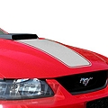 Silver Mach 1 Hood Decal (99-04 Mach 1) - AmericanMuscle Graphics 26048