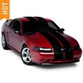 Black Lemans Stripes - 12 in. (94-04 All) - American Muscle Graphics 26050