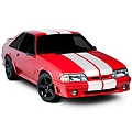 White Lemans Stripes - 12 in. (79-93 All) - American Muscle Graphics 26051