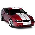White Lemans Stripes - 12in (94-04 All) - AmericanMuscle Graphics 26051