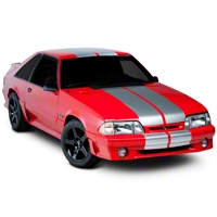 Silver Lemans Stripes - 12in (79-93 All) - AmericanMuscle Graphics 26052