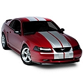 Silver Lemans Stripes - 12in (94-04 All) - AmericanMuscle Graphics 26052