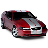 Silver Lemans Stripes - 12 in. (94-04 All) - American Muscle Graphics 26052