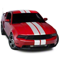Silver Lemans Stripes - 8in (05-14 All) - American Muscle Graphics 26055