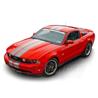 Silver Lemans Stripes - 8in (79-14 All) - American Muscle Graphics 26055