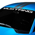 Mustang Windshield Banner - White (94-04 All) - AmericanMuscle Graphics 26131