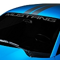 Mustang Windshield Banner - Frosted (94-04 All) - AmericanMuscle Graphics 26132
