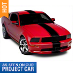 Black Super Snake Style Stripe Kit (05-14 All) - AmericanMuscle Graphics 26156