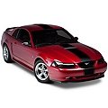Black Super Snake Style Stripe Kit (94-04 All) - AmericanMuscle Graphics 26156