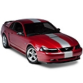 Silver Super Snake Style Stripe Kit (94-04 All) - AmericanMuscle Graphics 26157