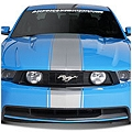 Silver Super Snake Style Stripe Kit (79-14 All) - AmericanMuscle Graphics 26157