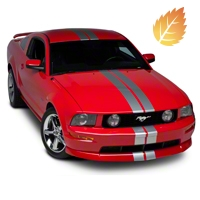 Silver GT500 Style Stripes - 5in (05-14 All) - American Muscle Graphics 26163