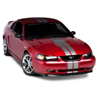 Silver GT500 Style Stripes - 5in (94-04 All) - AmericanMuscle Graphics 26163