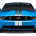 Silver GT500 Style Stripes - 5in (79-14 All) - AmericanMuscle Graphics 26163