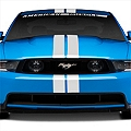 White GT500 Style Stripes - 5in (79-14 All) - American Muscle Graphics 26164