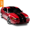 Black GT500 Style Stripes - 10in (94-04 All) - AmericanMuscle Graphics 26165