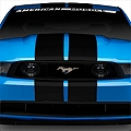 Matte Black GT500 Style Stripes - 10in (79-14 All) - American Muscle Graphics 26166