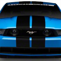 Matte Black GT500 Style Stripes - 10in (79-14 All) - AmericanMuscle Graphics 26166