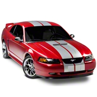 Silver GT500 Style Stripes - 10in (94-04 All) - AmericanMuscle Graphics 26167