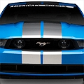 Silver GT500 Style Stripes - 10 in. (79-14 All) - American Muscle Graphics 26167