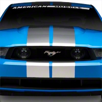 Silver GT500 Style Stripes - 10in (79-14 All) - AmericanMuscle Graphics 26167