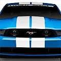 White GT500 Style Stripes - 10in (79-14 All) - American Muscle Graphics 26169