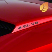 4.6L V8 Hood Scoop Decals - Matte Black (94-04) - American Muscle Graphics 26197