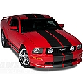 Matte Black Lemans Stripes - 12in (05-14 All) - AmericanMuscle Graphics 26202