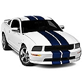 Blue GT500 Style Stripes - 10in (05-14 All) - AmericanMuscle Graphics 26236