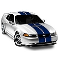 Blue GT500 Style Stripes - 10in (94-04 All) - AmericanMuscle Graphics 26236