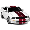 Red GT500 Style Stripes - 10in (05-14 All) - AmericanMuscle Graphics 26237