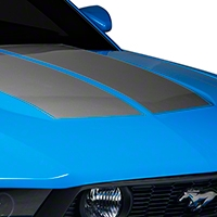 Silver Dual Hood Stripe (10-12 All) - American Muscle Graphics 26293