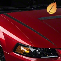 Matte Black Hood Accent Decal (99-04 GT; 99-02 V6) - American Muscle Graphics 26340