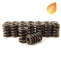 Comp Cams Valve Springs - 16 (85-95 5.0L, 5.8L) - Comp Cams 987-16