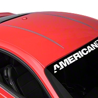 Roof Accent Stripes - Silver (2015 All) - American Muscle Graphics 386318