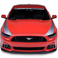 Outer Hood Stripes - Silver (2015 All) - American Muscle Graphics 386508