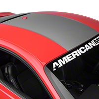 Roof Panel Decal - Silver (2015 All) - American Muscle Graphics 386522