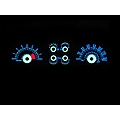 White Face Reverse Glow Gauges (05-09 GT)