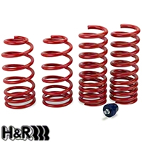 H&R Race Springs - Coupe (79-04 GT, V6, Mach 1; 93-98 Cobra) - H&R 51650.88