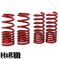 H&R Race Springs - Coupe (99-04 Cobra) - H&R 51659.88