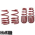 H&R Race Springs - Coupe & Convertible (05-09 GT, V6) - H&R 51655.88