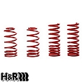 H&R Race Springs - Coupe & Convertible (11-14 GT, V6) - H&R 51690-88