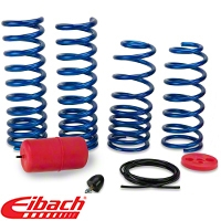 Eibach Drag-Launch Springs - Coupe (79-04 GT, Mach 1; 93-98 Cobra) - Eibach 9310.14