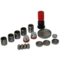 Ford Racing Freeze Plug & Dowel Kit - Aluminum Block (96-01 Cobra; 03-04 Mach 1) - Ford Racing M-6026-A46