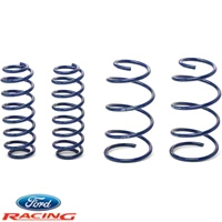 Ford Racing Cobra Jet Drag Spring Kit (05-14 GT, GT500) - Ford Racing M-5300-RA