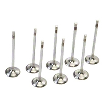 Ford Racing BOSS 302R Intake Valves - Set of 8 (11-14 5.0L) - Ford Racing M-6507-M50BR