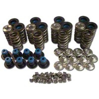 Patriot Performance Valve Spring Kit (99-04 GT) - Patriot Performance 4516