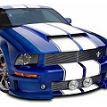 Cervini's Functional Ram Air Kit for Ram Air Hood (05-09 GT, V6) - Cervini's 8031